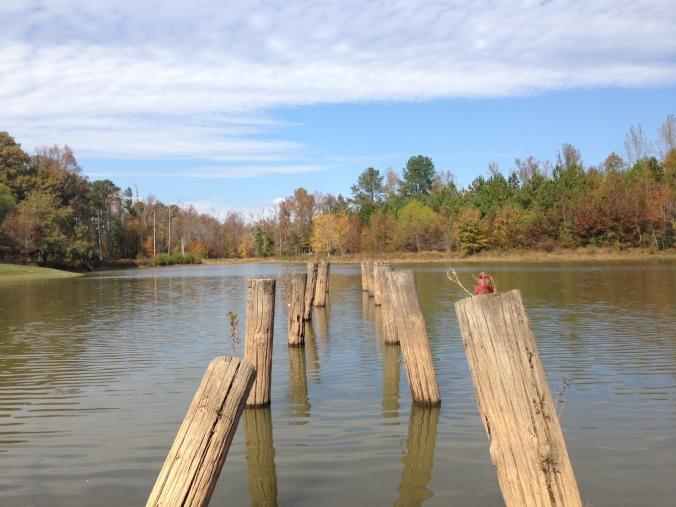 Fall Shakerag Park dock